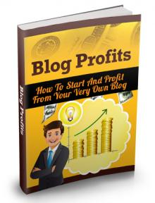 The Blog Profits