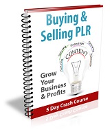 Buying And Selling PLR