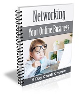 Networking Your Online Business