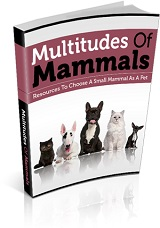 Multitudes Of Mammals